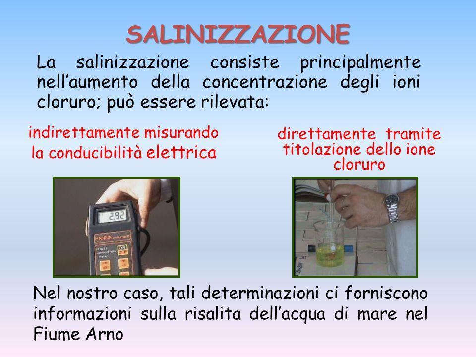 SALINIZZAZIONE direttamente tramite titolazione dello ione cloruro La salinizzazione consiste principalmente nell'aumento della concentrazione degli i