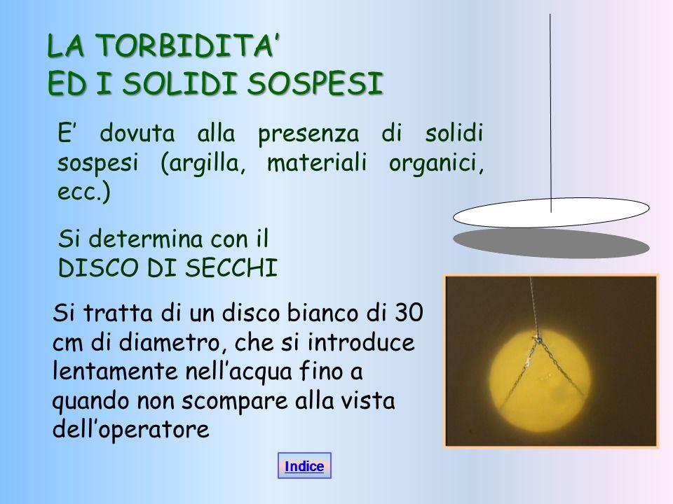 LA TORBIDITA' ED I SOLIDI SOSPESI E' dovuta alla presenza di solidi sospesi (argilla, materiali organici, ecc.) Si determina con il DISCO DI SECCHI Si