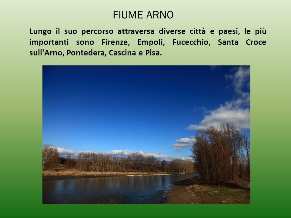 Lungo il suo percorso attraversa diverse città e paesi, le più importanti sono Firenze, Empoli, Fucecchio, Santa Croce sull'Arno, Pontedera, Cascina e
