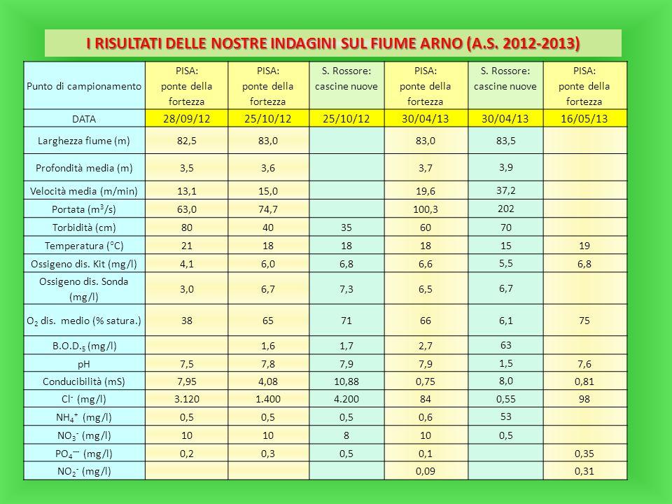 I RISULTATI DELLE NOSTRE INDAGINI SUL FIUME ARNO (A.S. 2012-2013) Punto di campionamento PISA: ponte della fortezza PISA: ponte della fortezza S. Ross