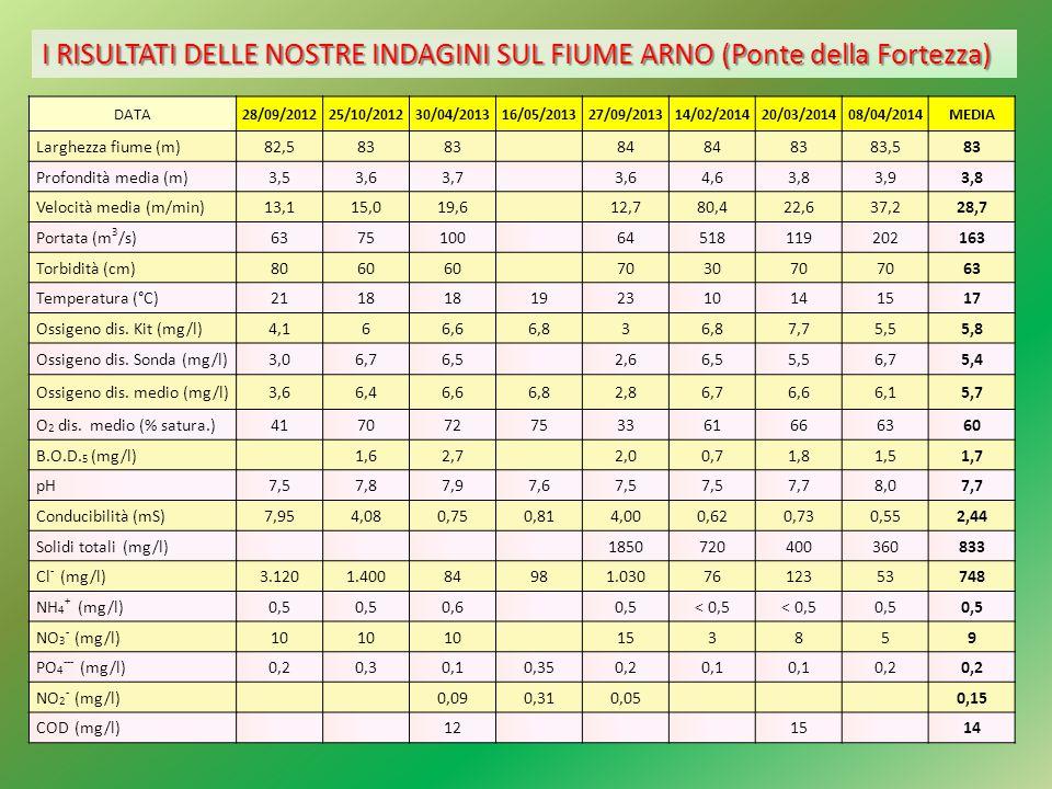 I RISULTATI DELLE NOSTRE INDAGINI SUL FIUME ARNO (Ponte della Fortezza) DATA28/09/201225/10/201230/04/201316/05/201327/09/201314/02/201420/03/201408/0