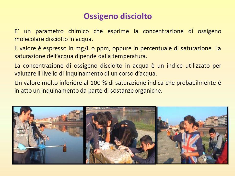 Ossigeno disciolto E' un parametro chimico che esprime la concentrazione di ossigeno molecolare disciolto in acqua. Il valore è espresso in mg/L o ppm