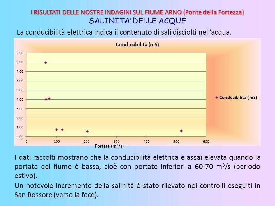 I RISULTATI DELLE NOSTRE INDAGINI SUL FIUME ARNO (Ponte della Fortezza) SALINITA' DELLE ACQUE I dati raccolti mostrano che la conducibilità elettrica