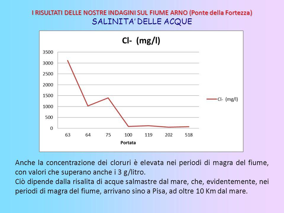 Anche la concentrazione dei cloruri è elevata nei periodi di magra del fiume, con valori che superano anche i 3 g/litro. Ciò dipende dalla risalita di
