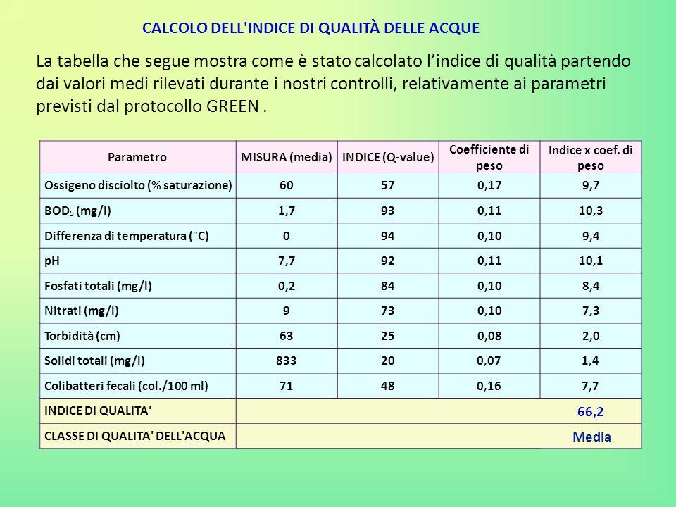 CALCOLO DELL'INDICE DI QUALITÀ DELLE ACQUE La tabella che segue mostra come è stato calcolato l'indice di qualità partendo dai valori medi rilevati du