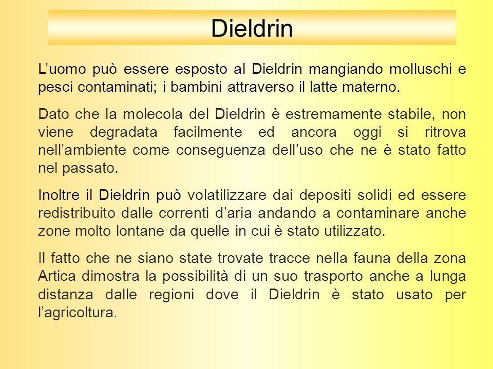 L'uomo può essere esposto al Dieldrin mangiando molluschi e pesci contaminati; i bambini attraverso il latte materno. Dato che la molecola del Dieldri