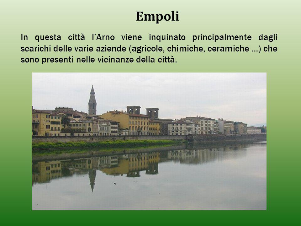 Empoli In questa città l'Arno viene inquinato principalmente dagli scarichi delle varie aziende (agricole, chimiche, ceramiche …) che sono presenti ne