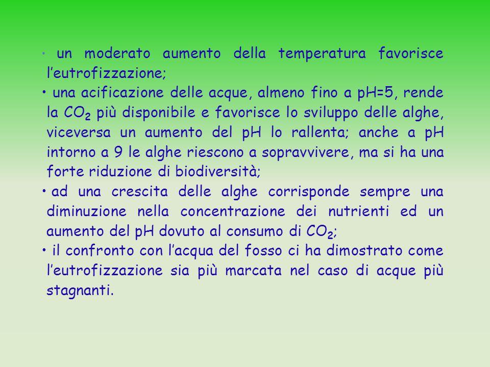 un moderato aumento della temperatura favorisce l'eutrofizzazione; una acificazione delle acque, almeno fino a pH=5, rende la CO 2 più disponibile e f