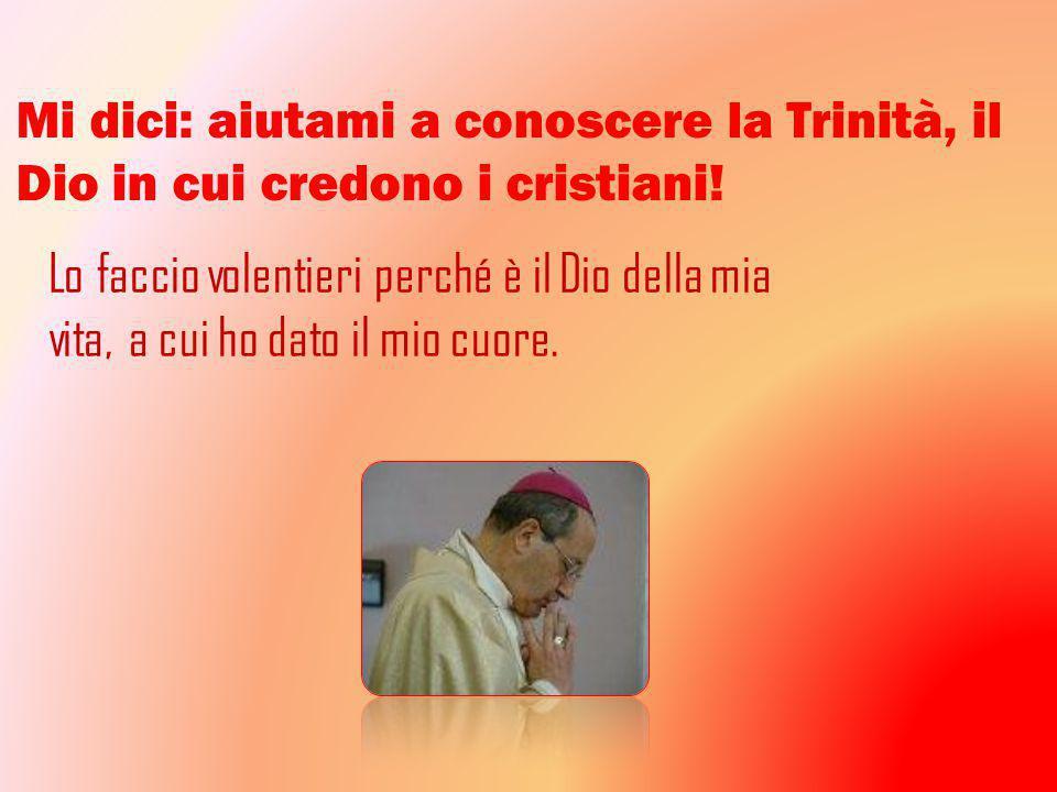 Mi dici: aiutami a conoscere la Trinità, il Dio in cui credono i cristiani.