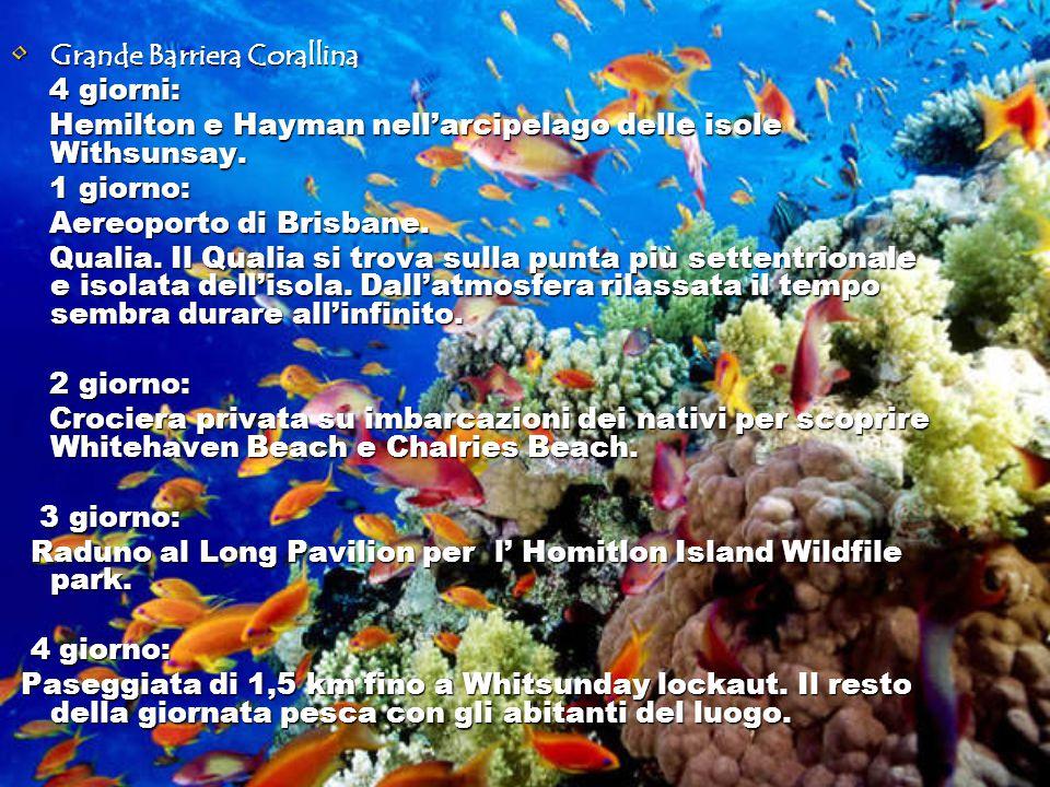 Grande Barriera Corallina Grande Barriera Corallina 4 giorni: 4 giorni: Hemilton e Hayman nell'arcipelago delle isole Withsunsay.