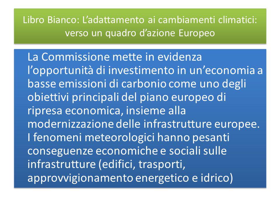 Libro Bianco: L'adattamento ai cambiamenti climatici: verso un quadro d'azione Europeo La Commissione mette in evidenza l'opportunità di investimento in un'economia a basse emissioni di carbonio come uno degli obiettivi principali del piano europeo di ripresa economica, insieme alla modernizzazione delle infrastrutture europee.