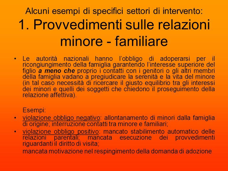 Alcuni esempi di specifici settori di intervento: 1. Provvedimenti sulle relazioni minore - familiare Le autorità nazionali hanno l'obbligo di adopera