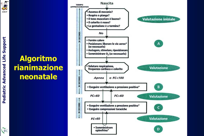 Pediatric Advanced Life Support Algoritmo rianimazione neonatale