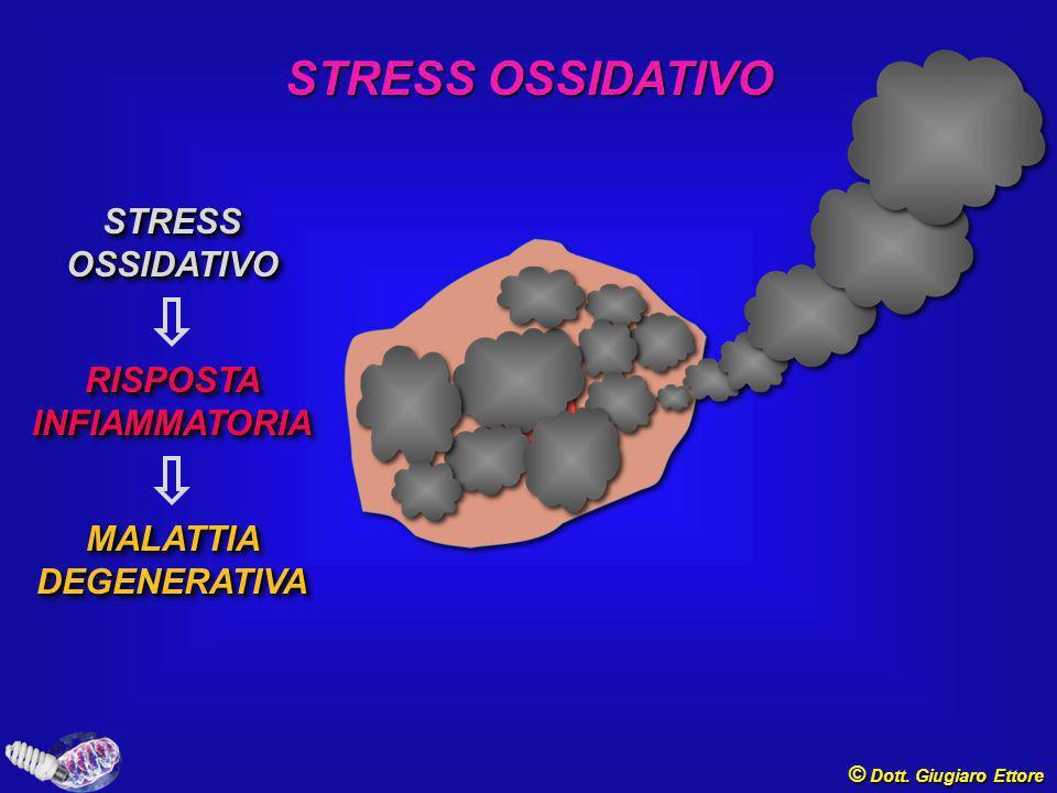 ROS, MITOCONDRI e CVD © Dott.Giugiaro Ettore Murray AJ.
