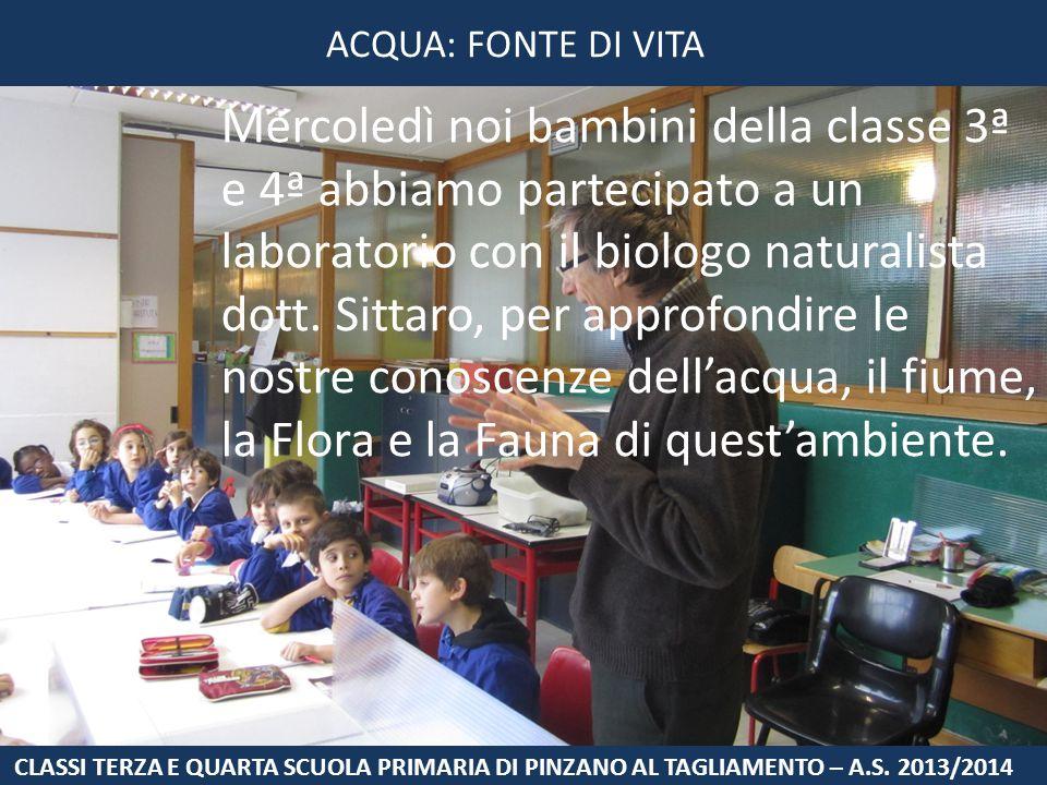 Mercoledì noi bambini della classe 3ª e 4ª abbiamo partecipato a un laboratorio con il biologo naturalista dott. Sittaro, per approfondire le nostre c