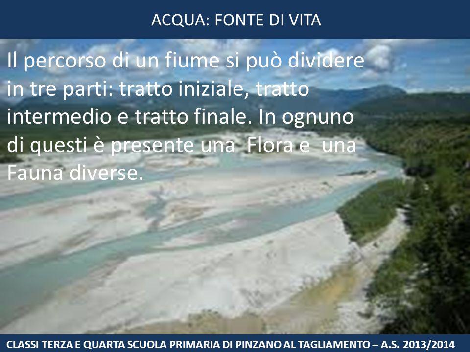 Il percorso di un fiume si può dividere in tre parti: tratto iniziale, tratto intermedio e tratto finale. In ognuno di questi è presente una Flora e u