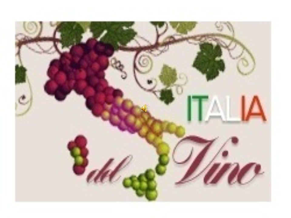 In Italia per quanto riguarda i vini abbiamo varie etichette; quelle più importanti sono:, DOC, DOCG, DOP, IGP, IGT E STG.