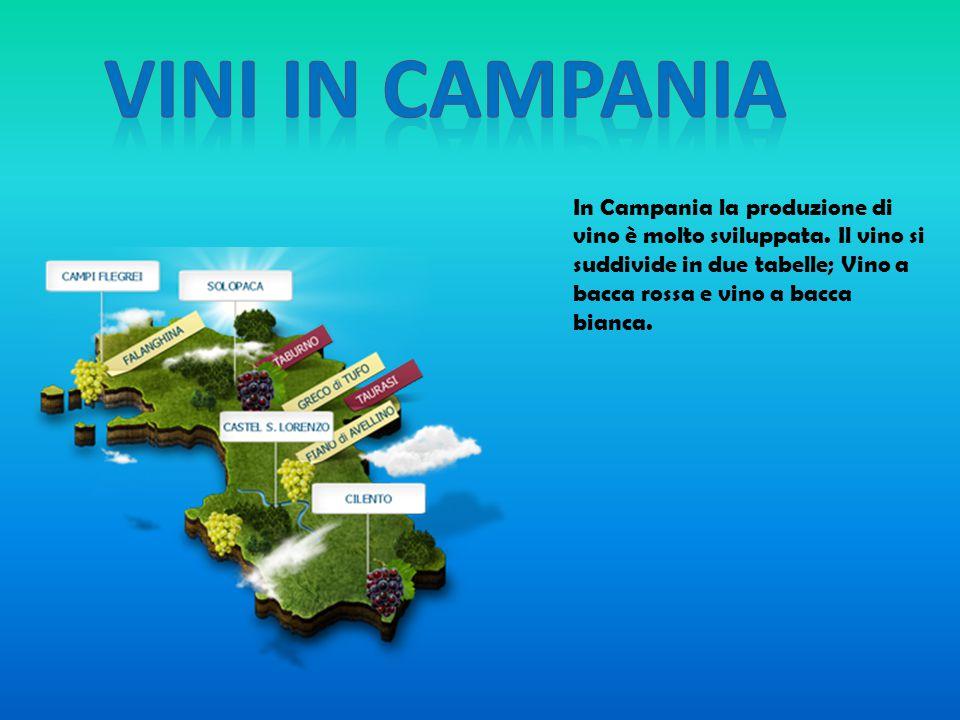 In Campania la produzione di vino è molto sviluppata. Il vino si suddivide in due tabelle; Vino a bacca rossa e vino a bacca bianca.
