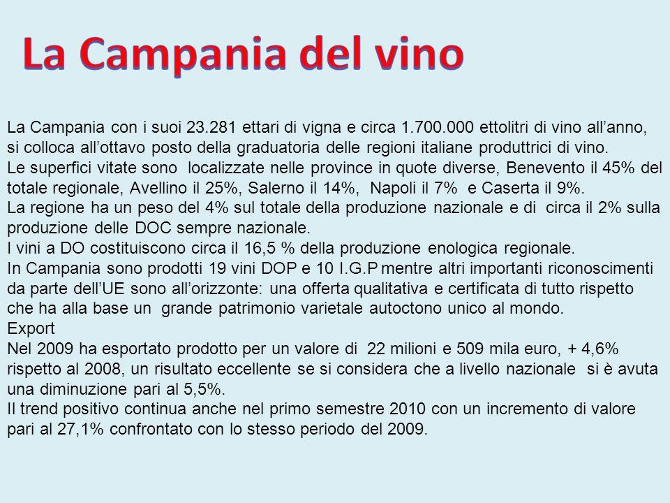La Campania con i suoi 23.281 ettari di vigna e circa 1.700.000 ettolitri di vino all'anno, si colloca all'ottavo posto della graduatoria delle region