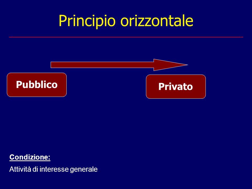 Principio orizzontale Condizione: Attività di interesse generale Pubblico Privato