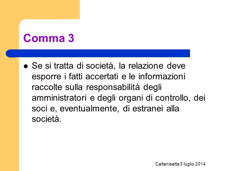 Caltanisetta 3 luglio 2014 Comma 3 Se si tratta di società, la relazione deve esporre i fatti accertati e le informazioni raccolte sulla responsabilit