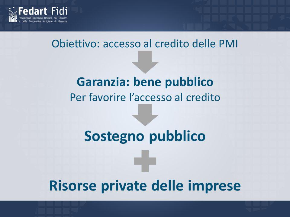 Obiettivo: accesso al credito delle PMI Garanzia: bene pubblico Per favorire l'accesso al credito Sostegno pubblico Risorse private delle imprese