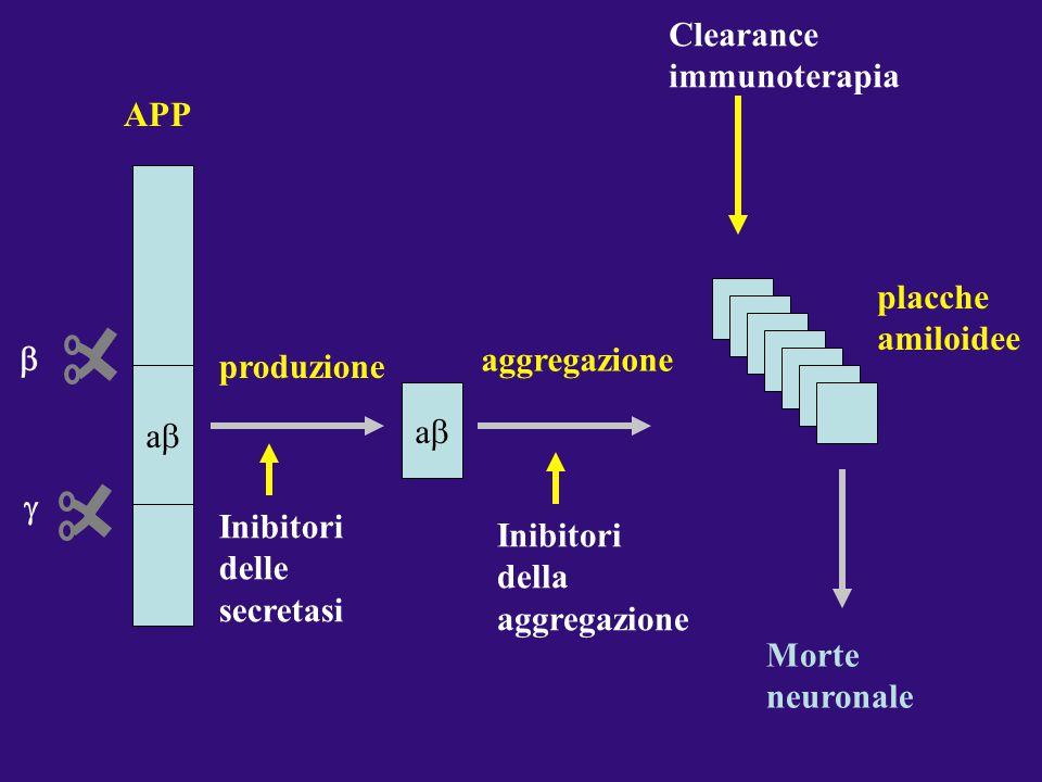 APP aa   produzione Inibitori delle secretasi aa aggregazione Inibitori della aggregazione Morte neuronale placche amiloidee Clearance immunoter