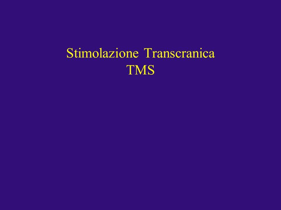 Stimolazione Transcranica TMS