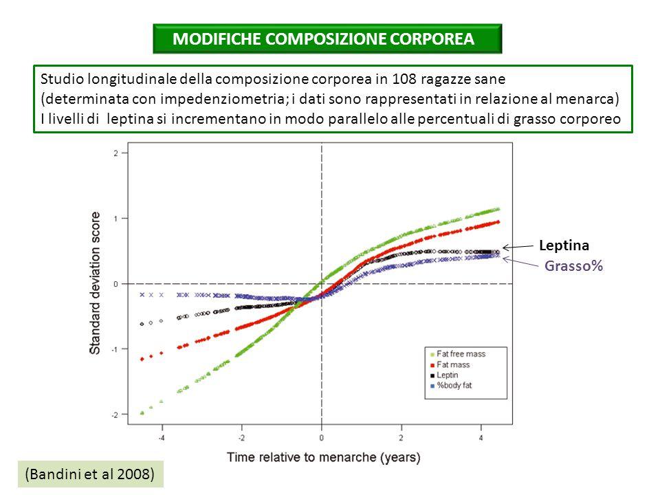 (Bandini et al 2008) MODIFICHE COMPOSIZIONE CORPOREA Leptina Grasso% Studio longitudinale della composizione corporea in 108 ragazze sane (determinata con impedenziometria; i dati sono rappresentati in relazione al menarca) I livelli di leptina si incrementano in modo parallelo alle percentuali di grasso corporeo