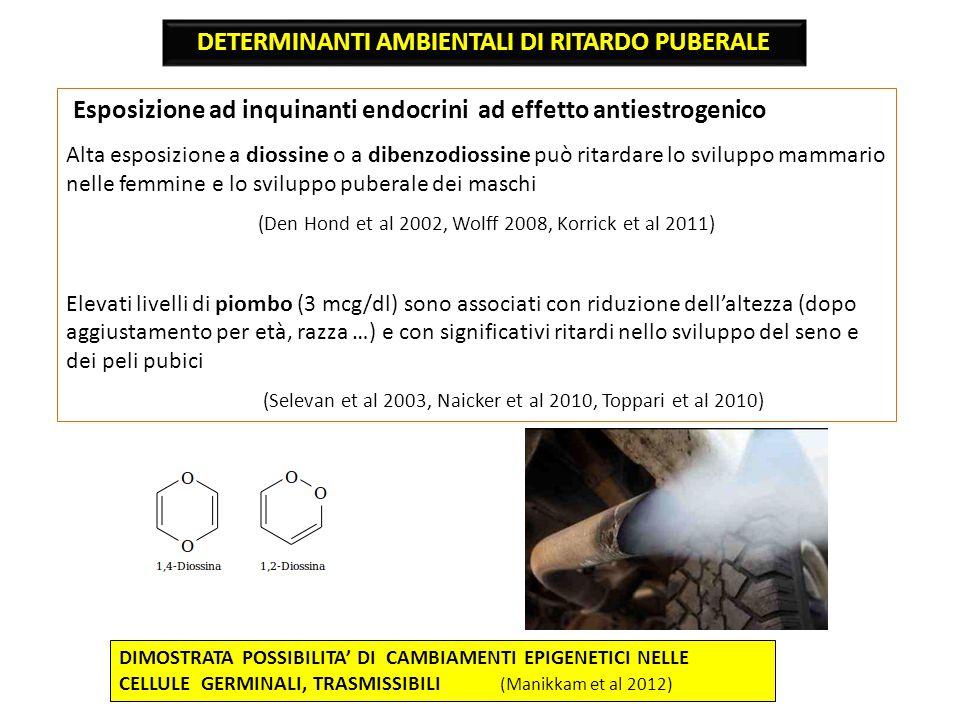 Esposizione ad inquinanti endocrini ad effetto antiestrogenico Alta esposizione a diossine o a dibenzodiossine può ritardare lo sviluppo mammario nell