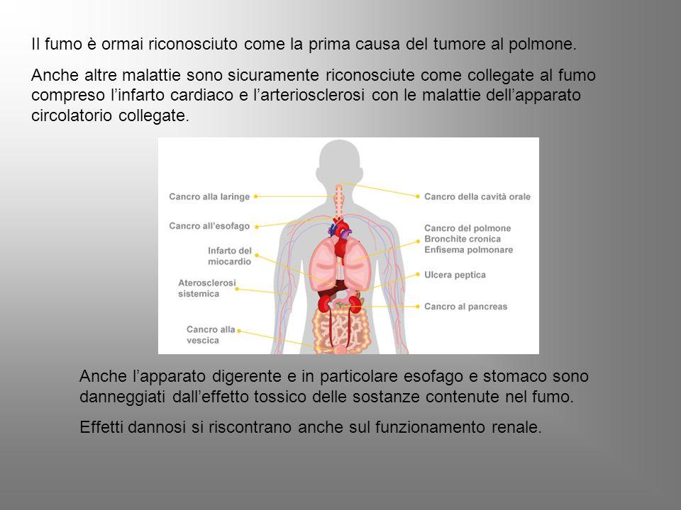 Il fumo è ormai riconosciuto come la prima causa del tumore al polmone.