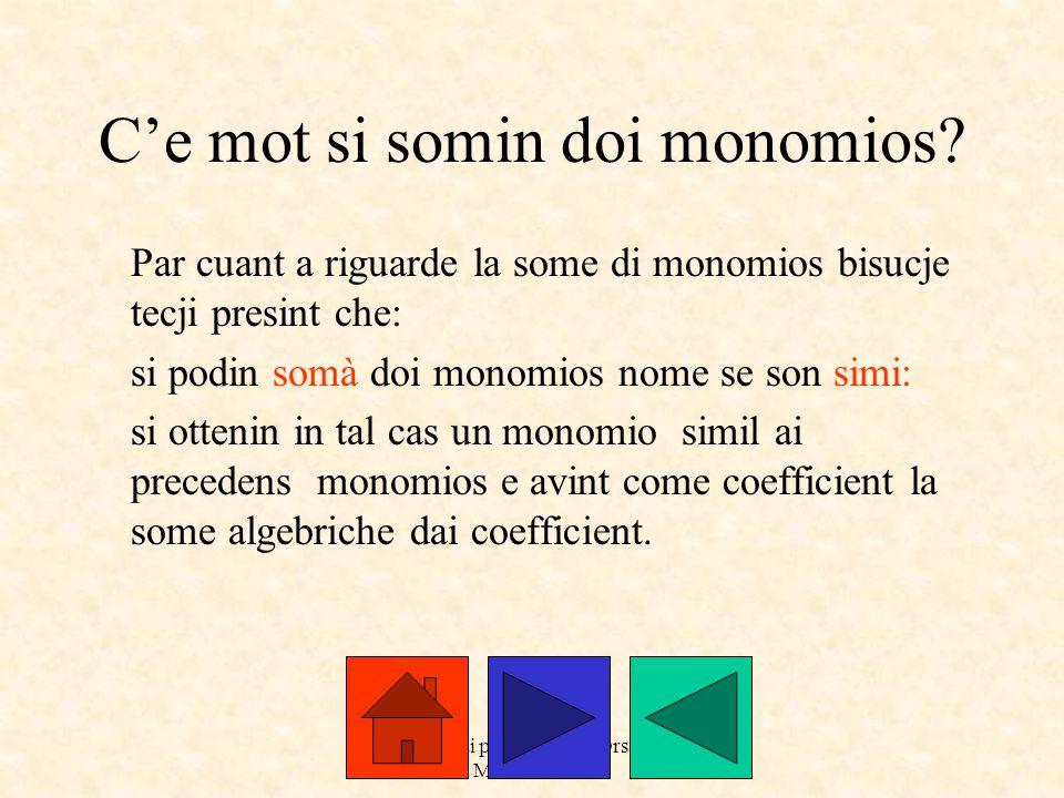 a cure dai prof. Roberto Orsaria e Monica Secco C'e mot si somin doi monomios.