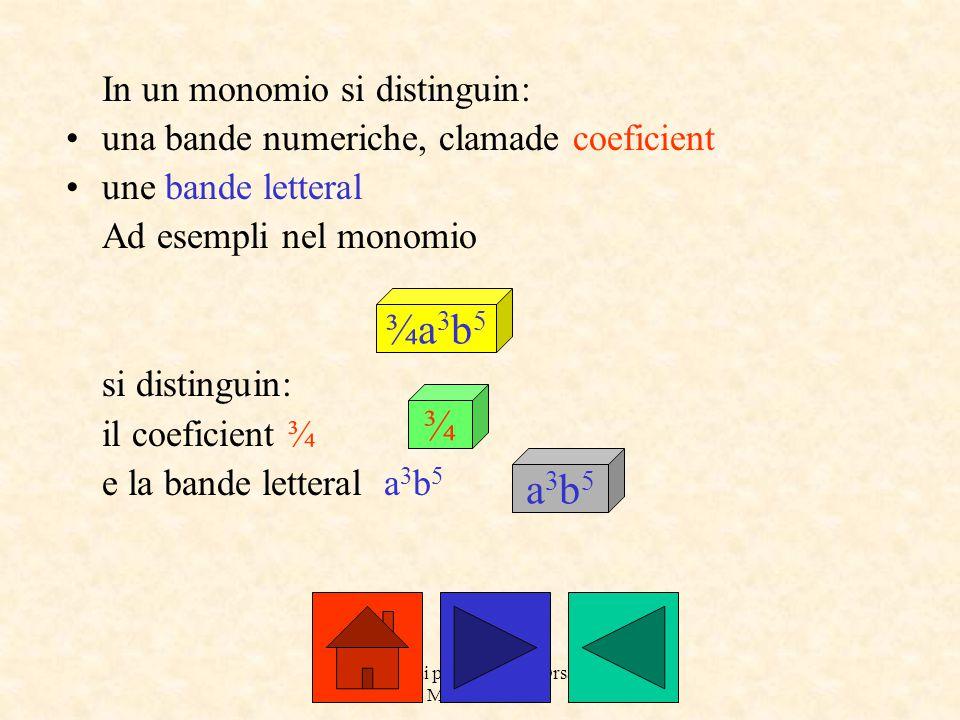 a cure dai prof.Roberto Orsaria e Monica Secco C'è mot cà si moltiplichin i doi monomios.