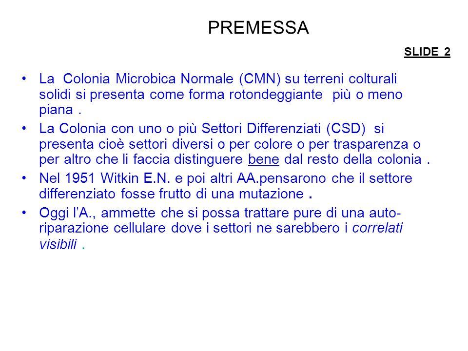 PREMESSA SLIDE 2 La Colonia Microbica Normale (CMN) su terreni colturali solidi si presenta come forma rotondeggiante più o meno piana.