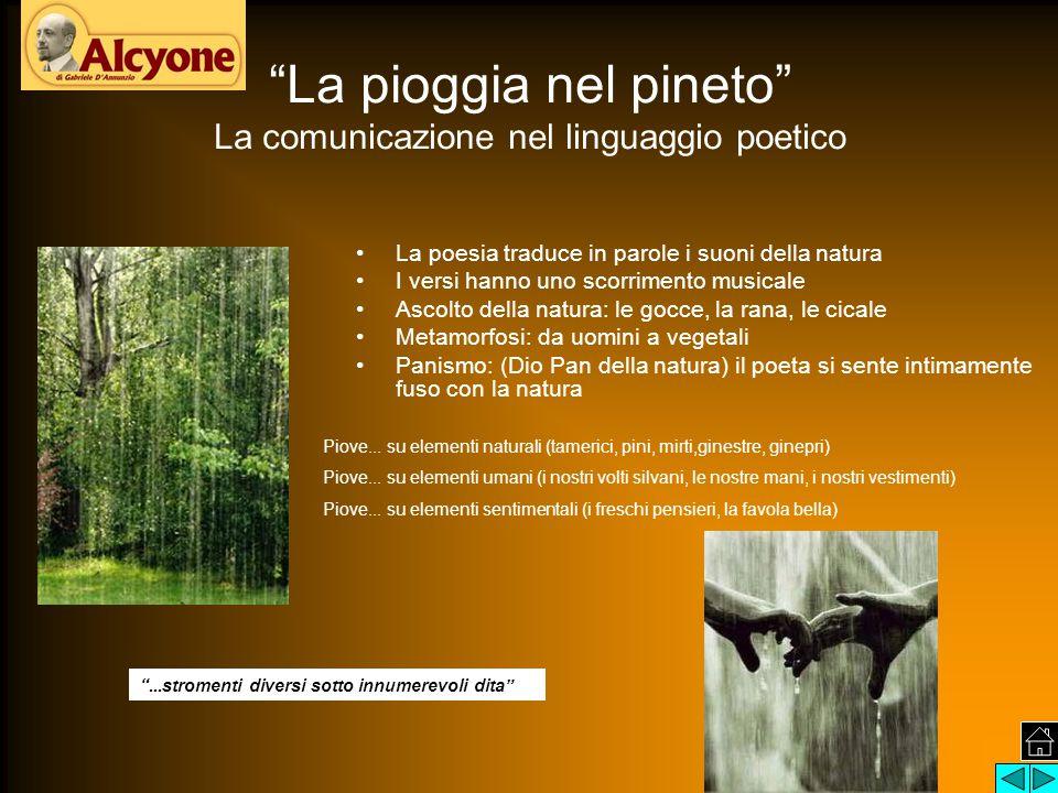 """""""La pioggia nel pineto"""" La comunicazione nel linguaggio poetico La poesia traduce in parole i suoni della natura I versi hanno uno scorrimento musical"""