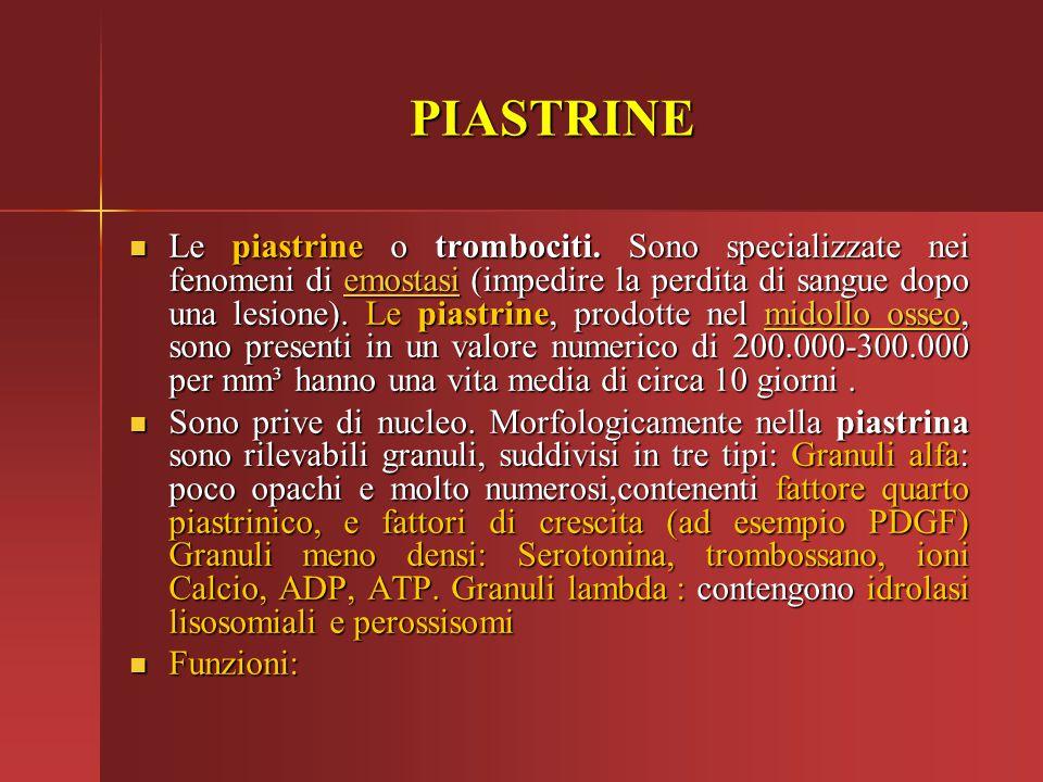 PIASTRINE Le piastrine o trombociti. Sono specializzate nei fenomeni di emostasi (impedire la perdita di sangue dopo una lesione). Le piastrine, prodo