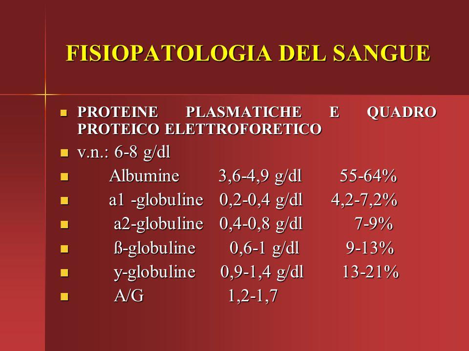PROTEINE PLASMATICHE E QUADRO PROTEICO ELETTROFORETICO PROTEINE PLASMATICHE E QUADRO PROTEICO ELETTROFORETICO v.n.: 6-8 g/dl v.n.: 6-8 g/dl Albumine 3