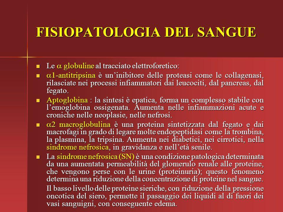 FISIOPATOLOGIA DEL SANGUE Le  globuline al tracciato elettroforetico: Le  globuline al tracciato elettroforetico:  1-antitripsina è un'inibitore