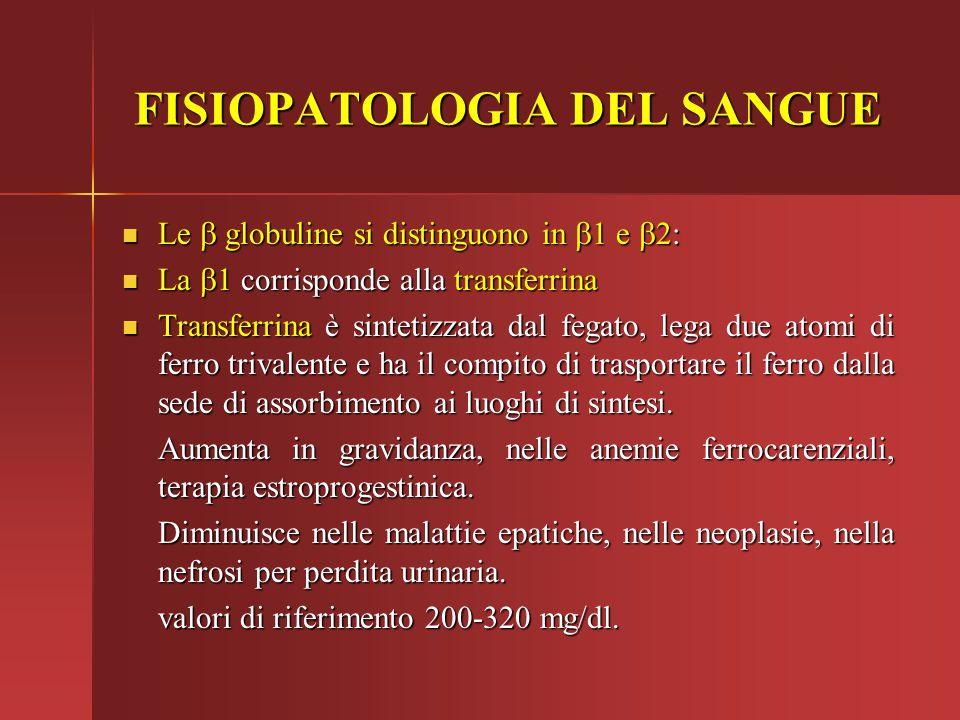 FISIOPATOLOGIA DEL SANGUE Le  globuline si distinguono in  1 e  2: Le  globuline si distinguono in  1 e  2: La  1 corrisponde alla transfer