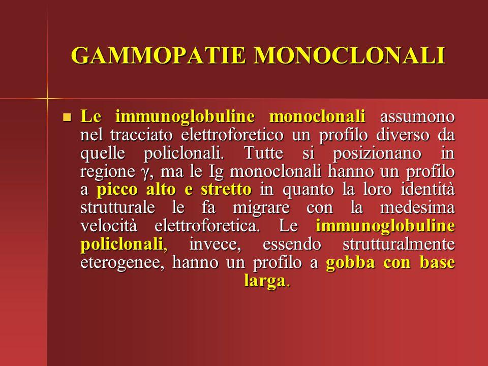 Le immunoglobuline monoclonali assumono nel tracciato elettroforetico un profilo diverso da quelle policlonali. Tutte si posizionano in regione γ, ma