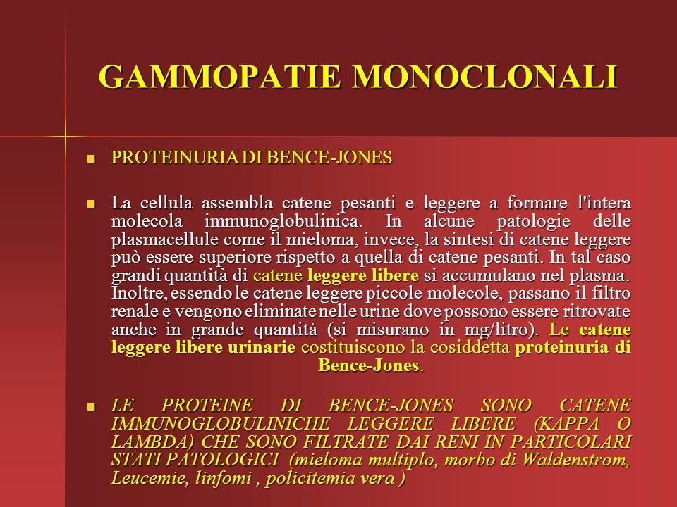 PROTEINURIA DI BENCE-JONES PROTEINURIA DI BENCE-JONES La cellula assembla catene pesanti e leggere a formare l'intera molecola immunoglobulinica. In a