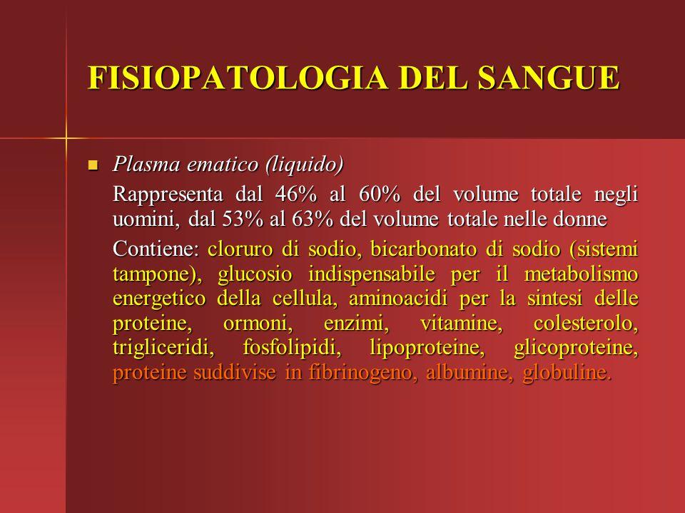 FISIOPATOLOGIA DEL SANGUE Plasma ematico (liquido) Plasma ematico (liquido) Rappresenta dal 46% al 60% del volume totale negli uomini, dal 53% al 63%