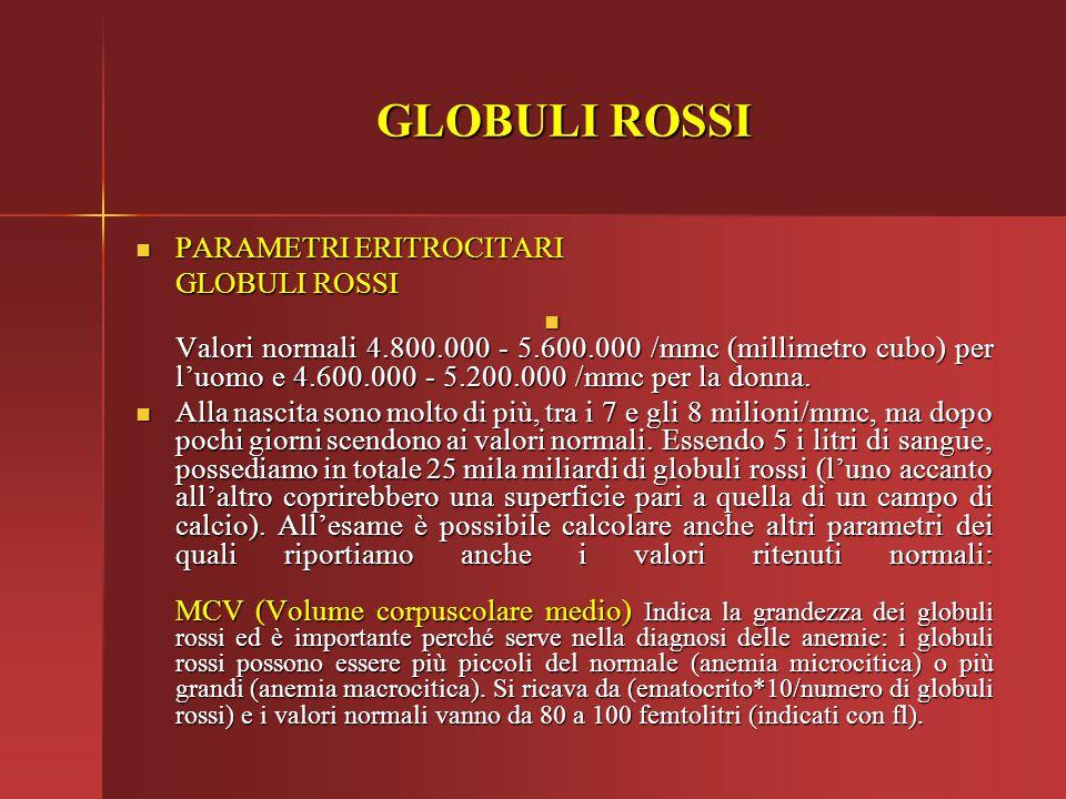 GLOBULI ROSSI PARAMETRI ERITROCITARI PARAMETRI ERITROCITARI GLOBULI ROSSI Valori normali 4.800.000 - 5.600.000 /mmc (millimetro cubo) per l'uomo e 4.6