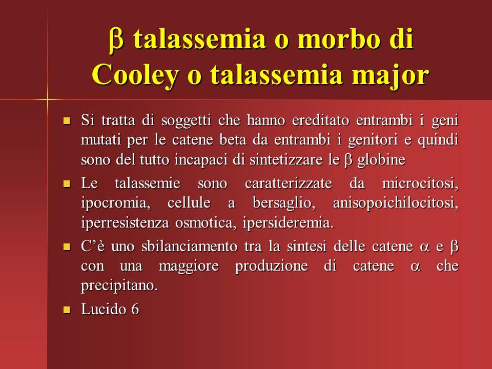  talassemia o morbo di Cooley o talassemia major Si tratta di soggetti che hanno ereditato entrambi i geni mutati per le catene beta da entrambi i ge