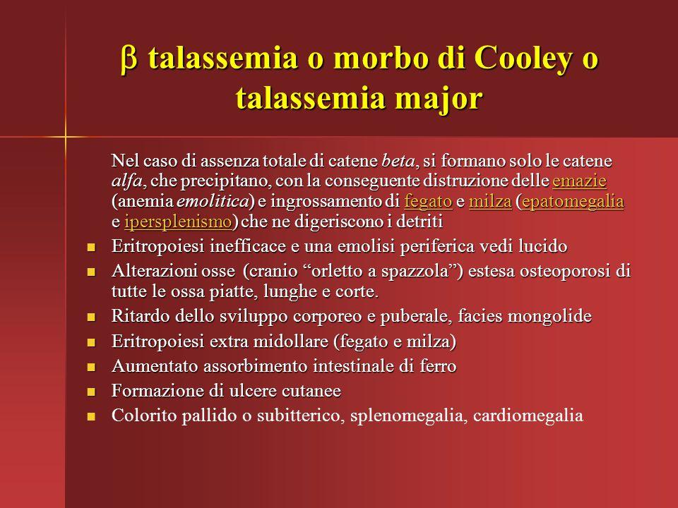  talassemia o morbo di Cooley o talassemia major Nel caso di assenza totale di catene beta, si formano solo le catene alfa, che precipitano, con la c