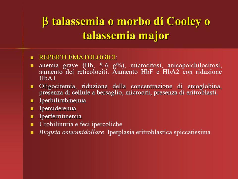  talassemia o morbo di Cooley o talassemia major REPERTI EMATOLOGICI: REPERTI EMATOLOGICI: anemia grave (Hb, 5-6 g%), microcitosi, anisopoichilocitos