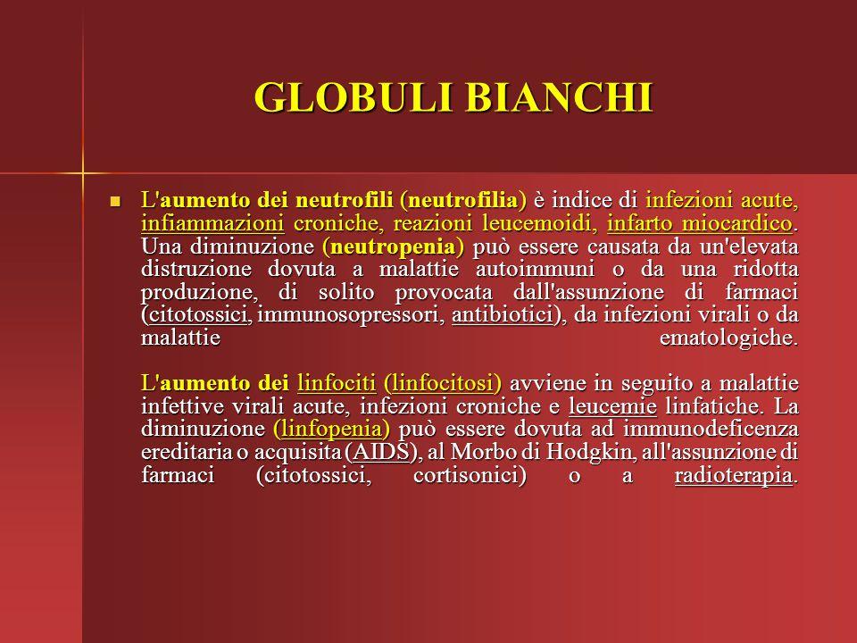 GLOBULI BIANCHI L'aumento dei neutrofili (neutrofilia) è indice di infezioni acute, infiammazioni croniche, reazioni leucemoidi, infarto miocardico. U