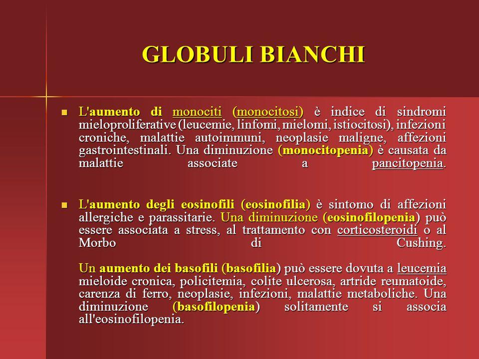 GLOBULI BIANCHI L'aumento di monociti (monocitosi) è indice di sindromi mieloproliferative (leucemie, linfomi, mielomi, istiocitosi), infezioni cronic