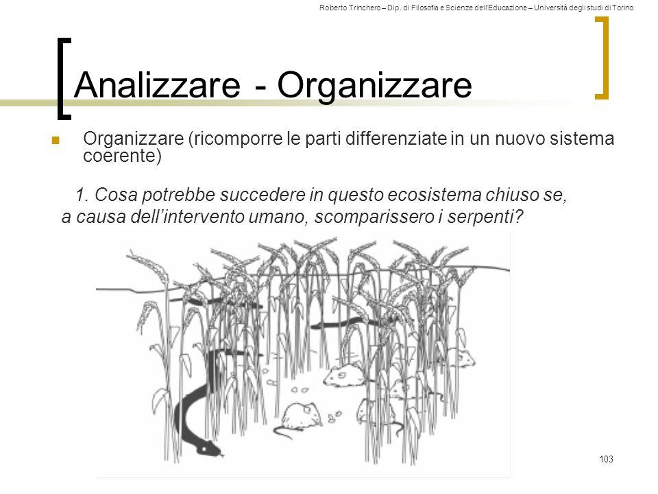 Roberto Trinchero – Dip. di Filosofia e Scienze dell'Educazione – Università degli studi di Torino 103 Analizzare - Organizzare Organizzare (ricomporr