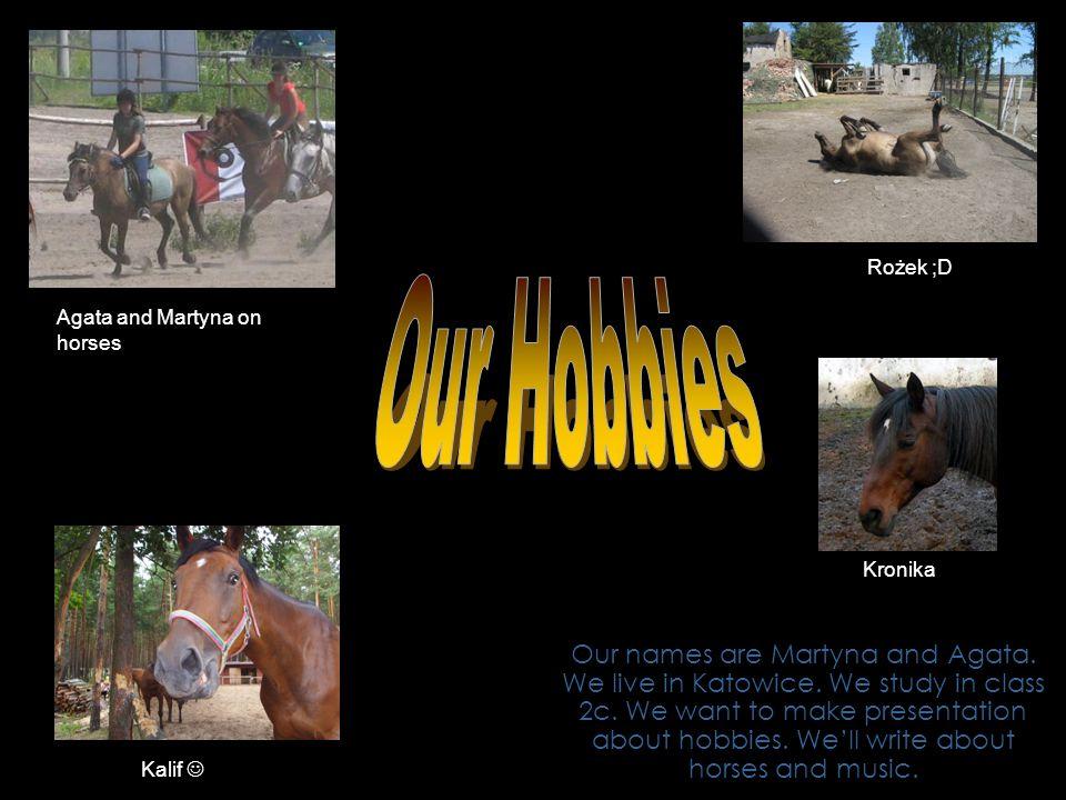 We have ridden horses since we were children.